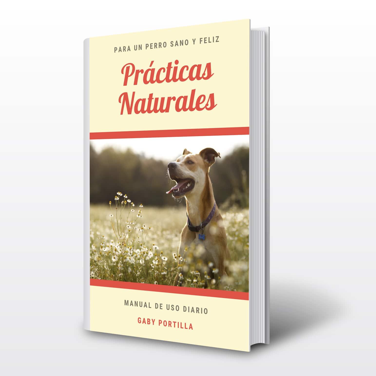 Practicas Naturales eBook
