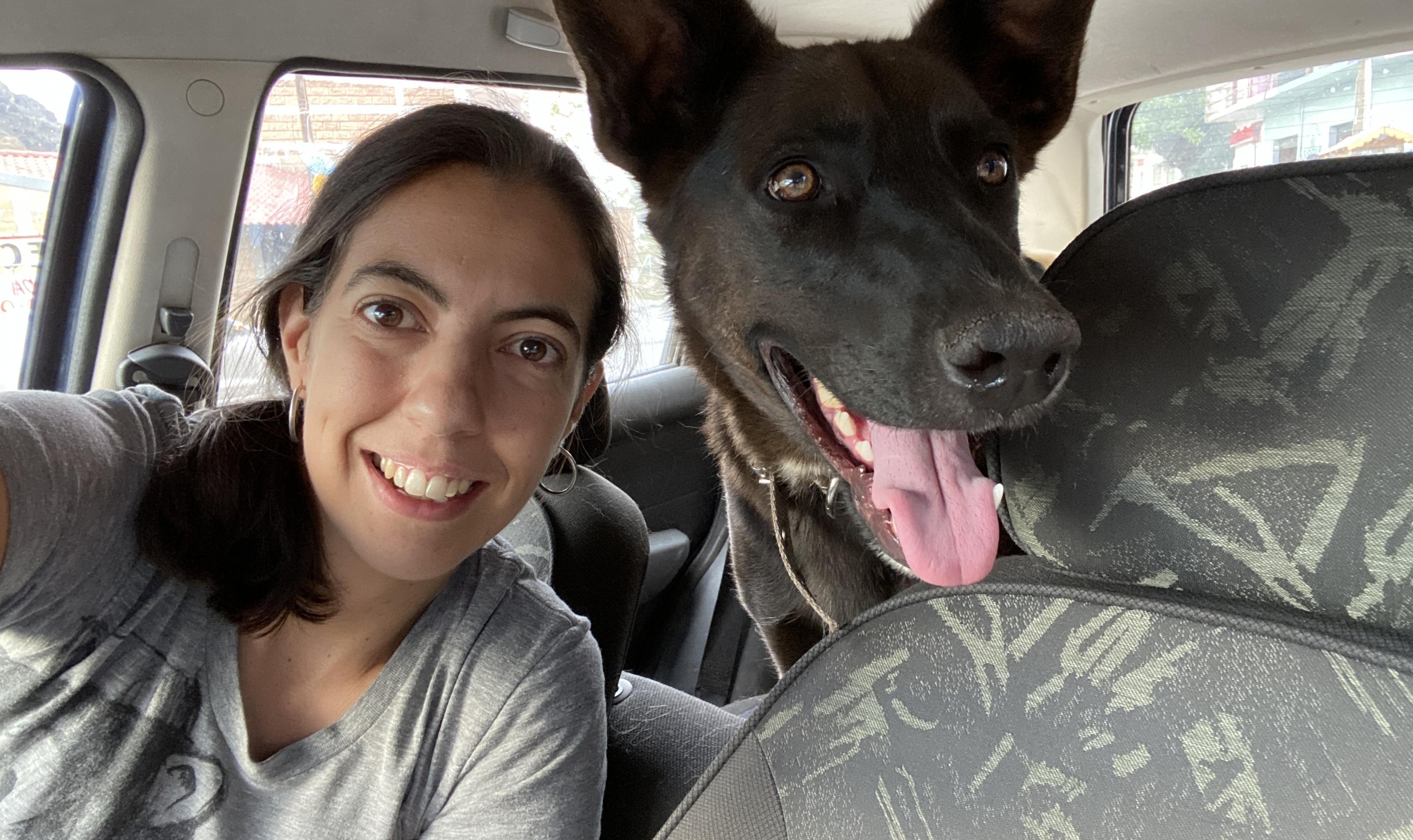 Gaby portilla Dog Sensitive